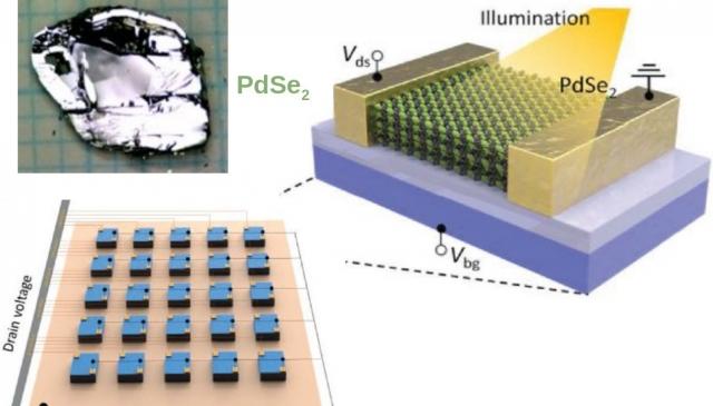 (十月)呂欽山教授與長晶專家郭家農博士成長出高品質半導體單晶塊材