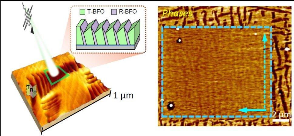 (十二月)楊展其教授與陳宜君教授在多鐵記憶體材料鐵酸鉍薄膜的光操控